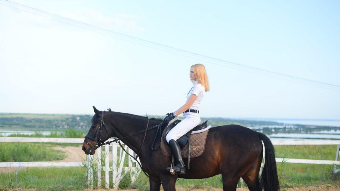 Sklep jeździecki z dobrym wyposażeniem